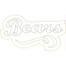 Bears Distressed Applique Snap Shot