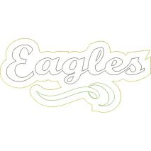 Eagles Distressed Applique Snap Shot