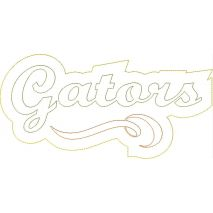 Gators Distressed Applique Snap Shot