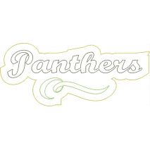 Panthers Distressed Applique Snap Shot