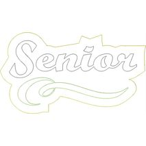 Senior Distressed Applique Snap Shot