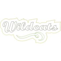 Wildcats Distressed Applique Snap Shot