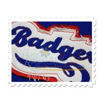 Badgers Distressed Applique