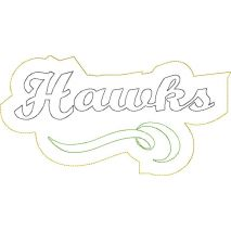 Hawks Distressed Applique Snap Shot