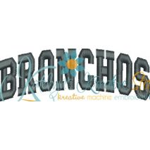 Bronchos Arched 4x4 Satin Snap Shot