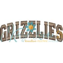 Grizzlies Arched 4x4 Satin Snap Shot