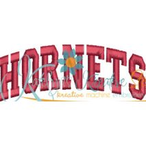 Hornets Arched 4x4 Satin Snap Shot