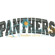 Panthers Arched 4x4 Satin Snap Shot