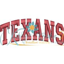Texans Arched 4x4 Satin Snap Shot