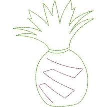Pineapple Applique Snap Shot