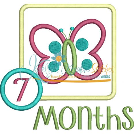 Butterfly Applique Frame Months Snap Shot